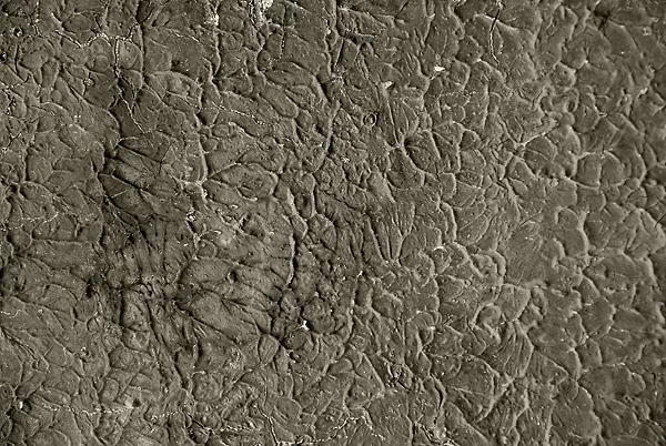 Old Paint Texture 6 - gratis downloaden