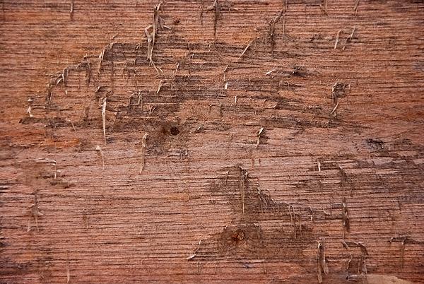 Alte Holz Textur 9