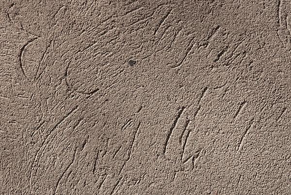 Alte Verputzte Wand Textur 7