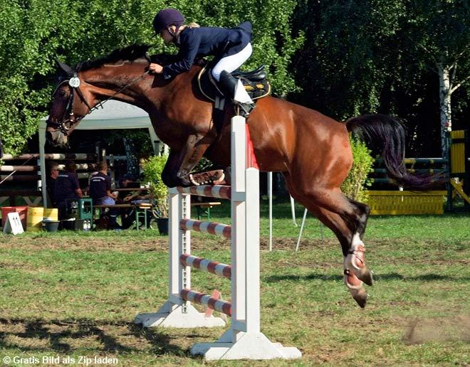 Der Sprung im Pferdeparcours | | 1A-Photoshop